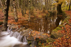River. In Autumn season at Geres National Park, Portugal royalty free stock image