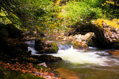 River in autumn time, bulgaria Royalty Free Stock Photography