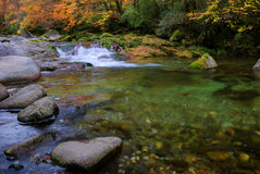 River and autumn trees Royalty Free Stock Photography