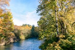 River in autumn. Wide blue river running through forest in autumn on a sunny day Royalty Free Stock Image