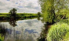River avon Stock Image