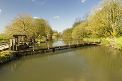 River Avon at Bickton near Fordingbridge Royalty Free Stock Image
