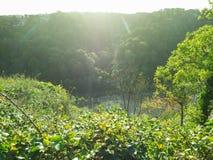 River Avon Gorge in Bristol Royalty Free Stock Photo