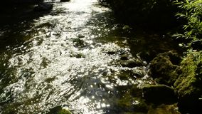 River in back lighting with stones stock video footage