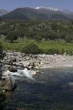 River backwater at Vera County Stock Photos