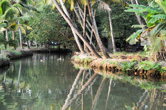 River of the backwaters at Kollam Royalty Free Stock Image