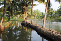 River of the backwaters at Kollam. On India Royalty Free Stock Photography