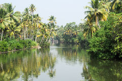 River on the backwaters the way from Kollam to Alleppey Stock Photo