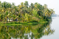 River on the backwaters the way from Kollam to Alleppey Royalty Free Stock Images