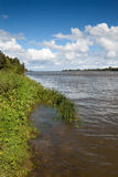 River bank Royalty Free Stock Images