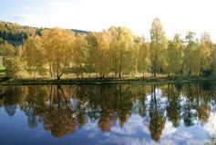 River bank Stock Image