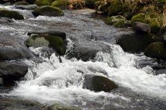 River bank Royalty Free Stock Image