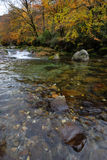 River and bank in autumn. Trickling river and trees with Fall colors Stock Photo