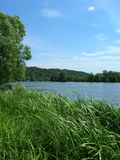 River bank. Beautiful and peaceful river bank in summer Royalty Free Stock Photos
