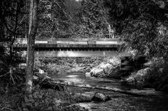 River bank and bridge into the woods stock images