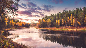 River bank in fall Royalty Free Stock Image