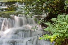 River Bank And Falls. Waterfalls alongside a river bank Royalty Free Stock Photography