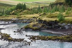 The river bank with green slopes and trees on it. Picture taken in Iceland royalty free stock photography