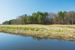 River bank and meadow, forest and blue sky. View on a sunny day stock photo