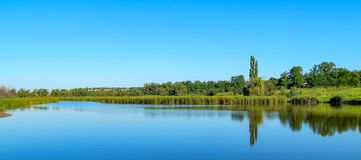 River bank with reflection of trees in the water, summer sunny day royalty free stock photography