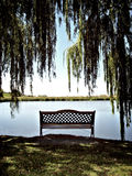 River bank's chair, man!. Portrait photo of a lonely chair on the edge of a pond royalty free stock photo
