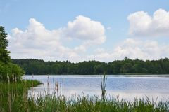 The river bank is a summer day. The river bank in the second half of the summer day Stock Images