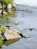 River Bank with stones Royalty Free Stock Photo