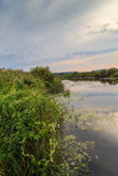 River bank at sunset. Summer evening, vertical frame Stock Image