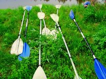 On the river bank there are oars from the kayak. Summer vacation on canoes and kayaks. On a summer day, on the green grassy bank of the river, there are oars Stock Image