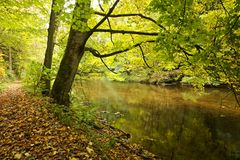River banks with fall colors Stock Photo