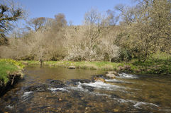 River Barle, Exmoor Stock Photo