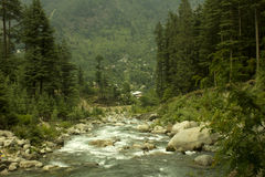 River Beas, Manali, Himachal Pradesh. Landscape image of River Beas, Manali, Himachal Pradesh amidst green trees Royalty Free Stock Images