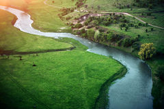 River in a beautiful green nature reserve Royalty Free Stock Photos