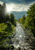 River. Beautiful panoramic view of river Stock Images