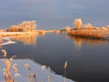 River Aukstumala and snowy trees, Lithuania. River  and beautiful snowy trees in winter in sunset colors , Lithuania Royalty Free Stock Image