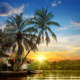 River, beautiful sunrise and  palms Royalty Free Stock Photography