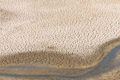 River bed in drought Stock Photography