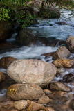 River Bed Royalty Free Stock Image