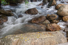 River Bed Stock Photography