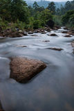 River Bed. Mountain river bed side with flowing water stones and green forest Stock Images