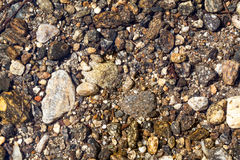 River Bed - Stones beneath the clear water of a river Stock Photos