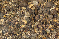 River Bed - Stones beneath the clear water of a river Royalty Free Stock Photo