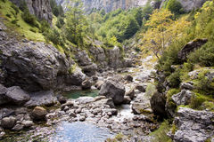 River Bellos in Canyon Anisclo Royalty Free Stock Photos