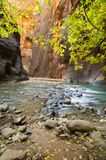 River Bend. A shallow river cascades over boulders as it cuts through deep canyon walls Stock Photo