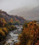 River bends through a colorful autumn forest royalty free stock photography