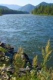 He river Bija - 2. Royalty Free Stock Photos