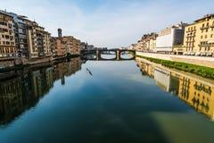 River bird Florence Royalty Free Stock Photo