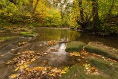 River Blyth in autumn Royalty Free Stock Photos