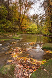 River Blyth in autumn vertical Royalty Free Stock Photography