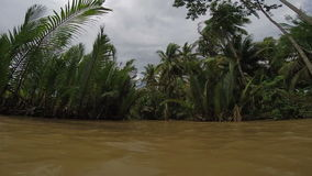 River boat trip Mekong Delta canal Vietnam stock video footage